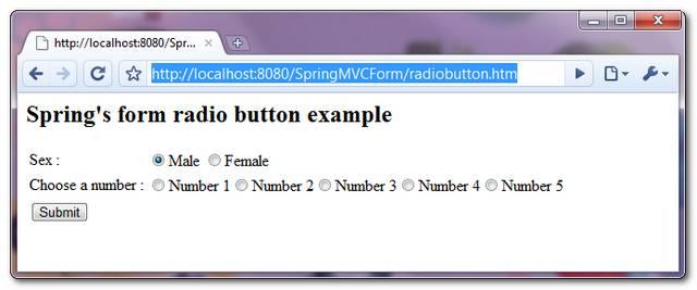 SpringMVC-RadioButton-Example-1
