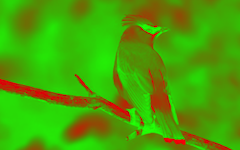 effect_color_green