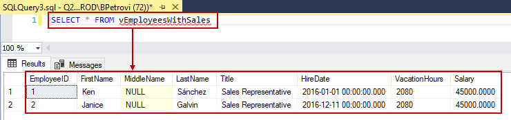 Results of a SELECT query using the view as the source
