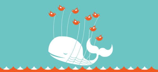 fail鲸失败