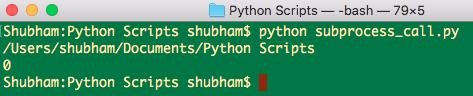 python subprocess call