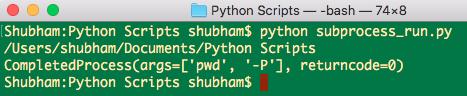 python subprocess run