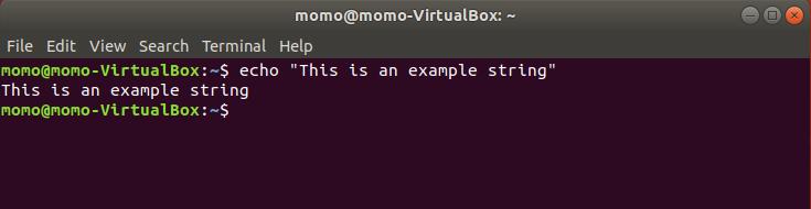 echo command example