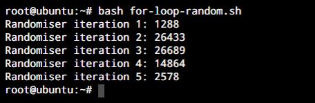 For Loop Randomizer