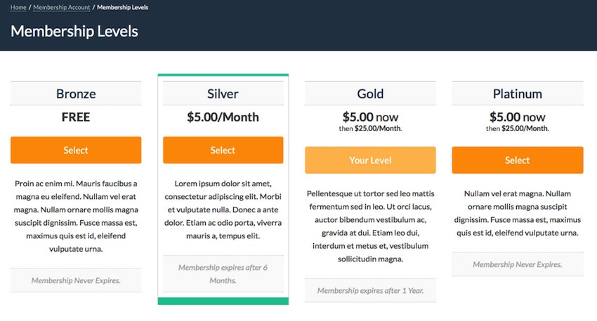 付费会员Pro插件可以向您的网站添加其他收入来源