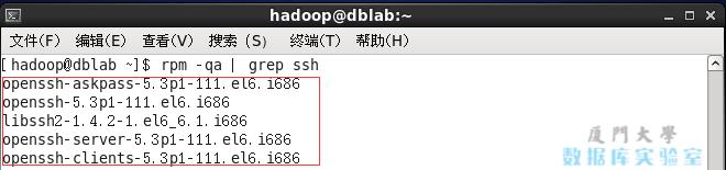 检查是否安装了SSH