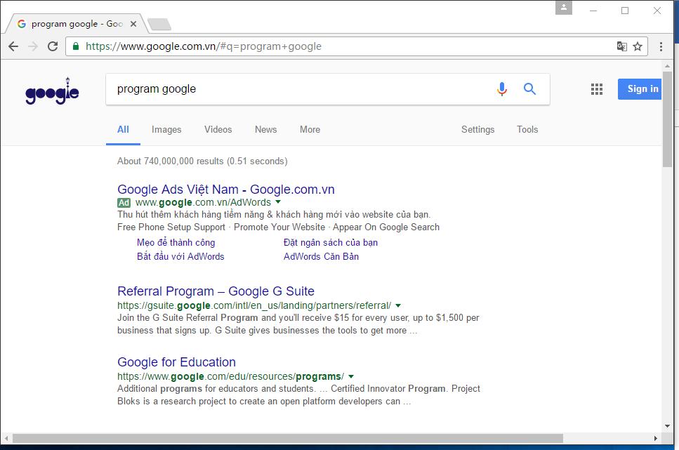 图1:输入program google的结果。