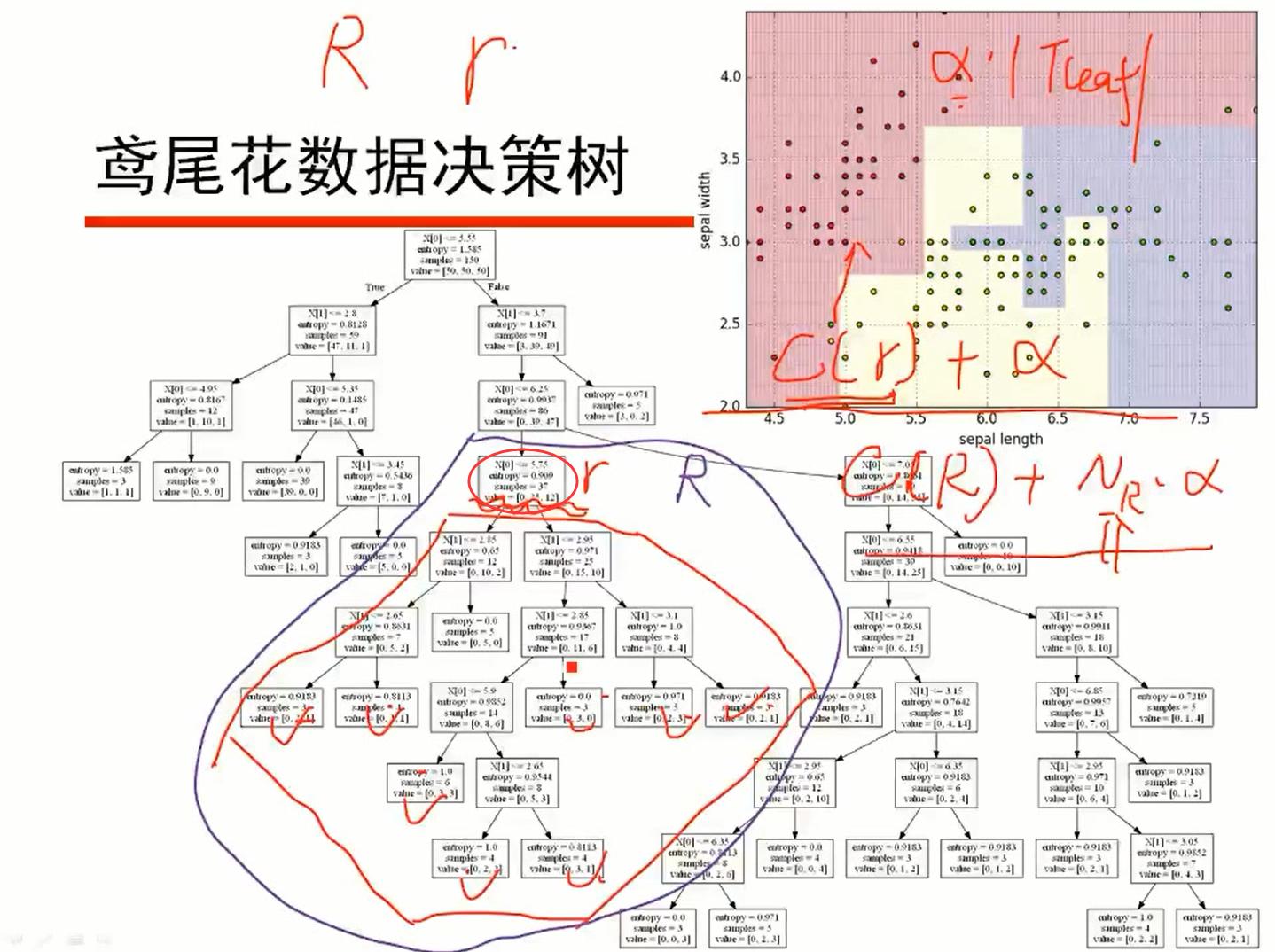 R为r结点分支后的子树
