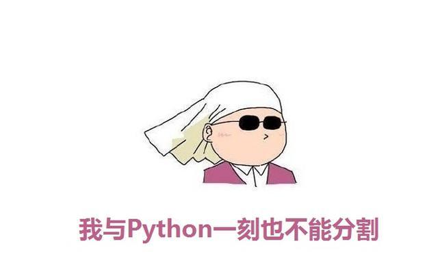Python快速入门,附详细视频教程