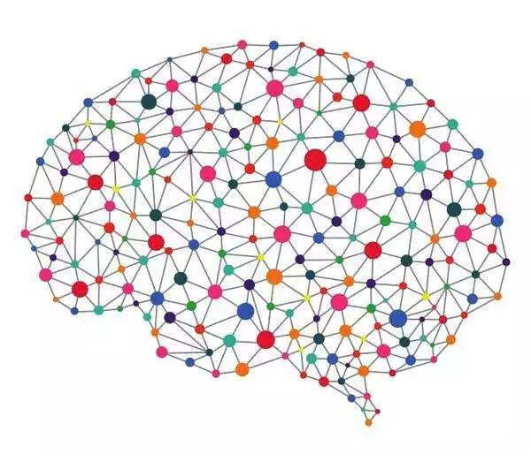 深度科普:神经网络的类型及其作用