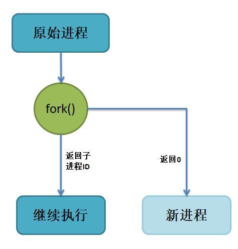 proces010