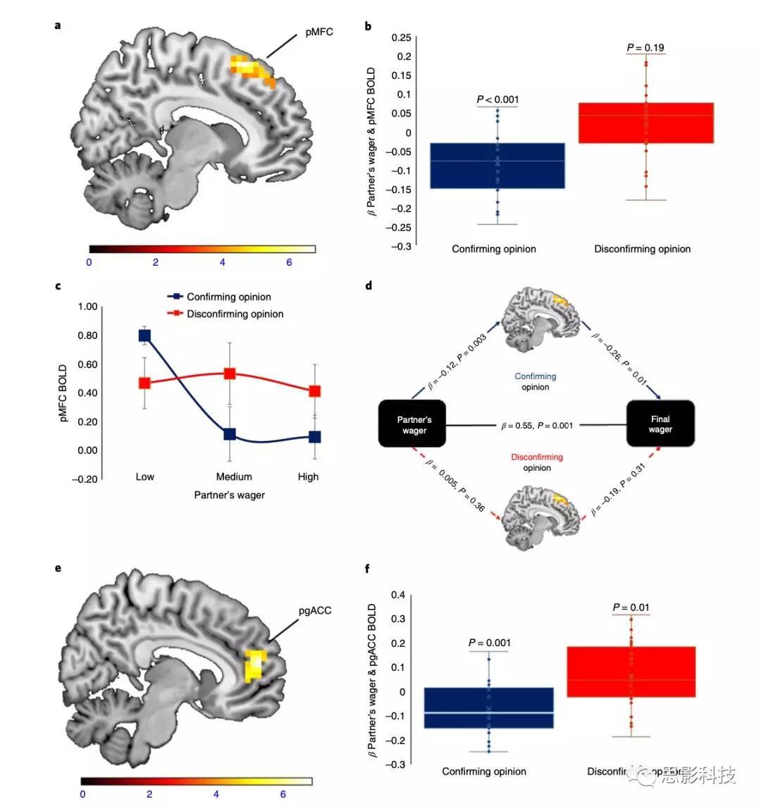 Nature子刊:抗炎为什么能缓解抑郁症和有神经保护作用?或与脂质代谢产物有关!
