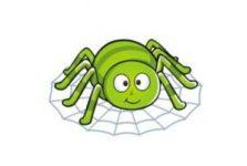 蜘蛛池是什么意思?蜘蛛池有什么作用?