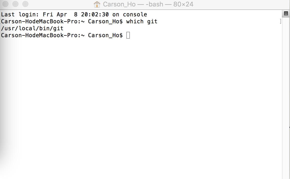 成功安装Git的示意图