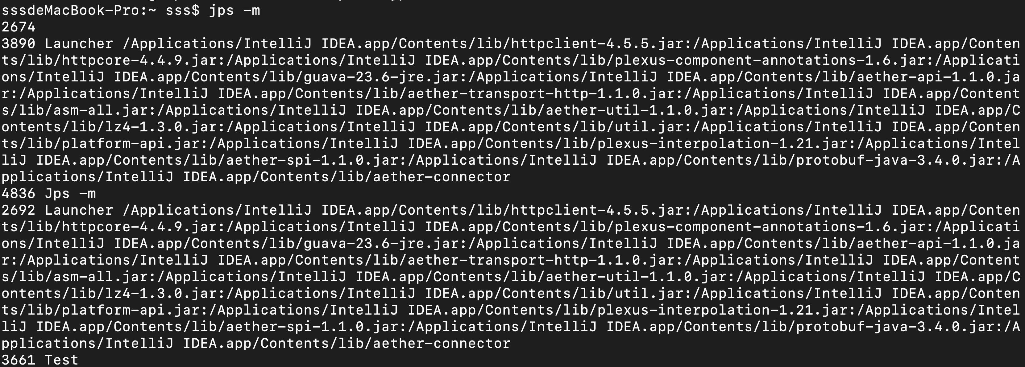 -m 输出传递给Java进程的参数