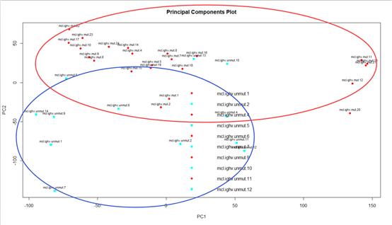 初步聚类分析