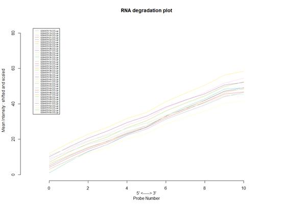 芯片质量分析-RNA降解