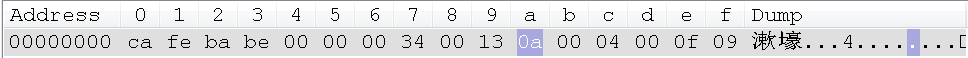 5.字节码-第一个常量的标志位.png
