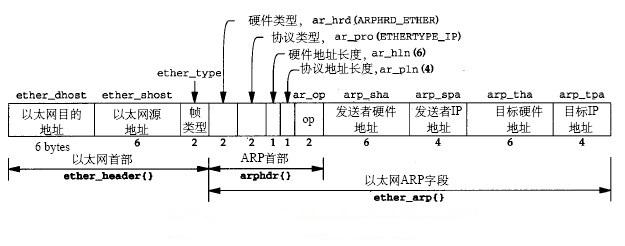 ARP报文格式