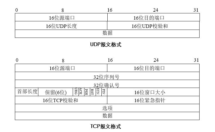 TCP/UDP报文格式