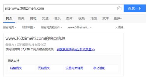 网站高级搜索