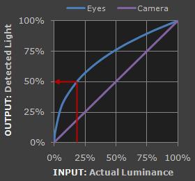 图2 人眼和摄像机的感光与实际输入光强的关系