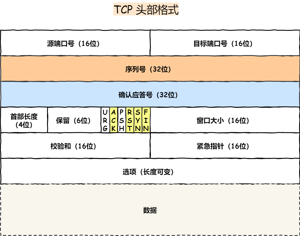 TCP 头格式