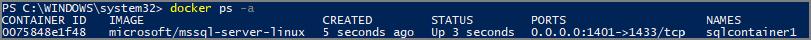 Docker ps 命令输出