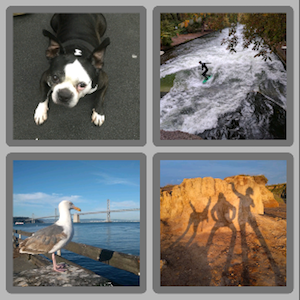 Screenshot showing 2 rows, each containing 2 images
