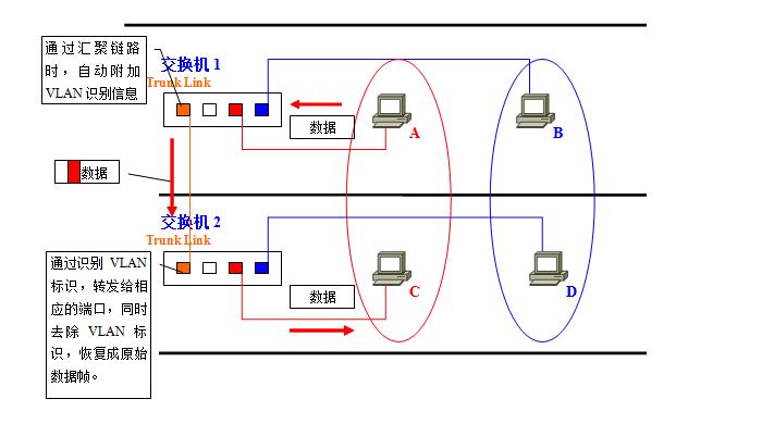 VLAN10.png