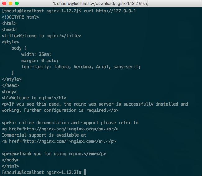 服务器成功访问本地的 Nginx 页面